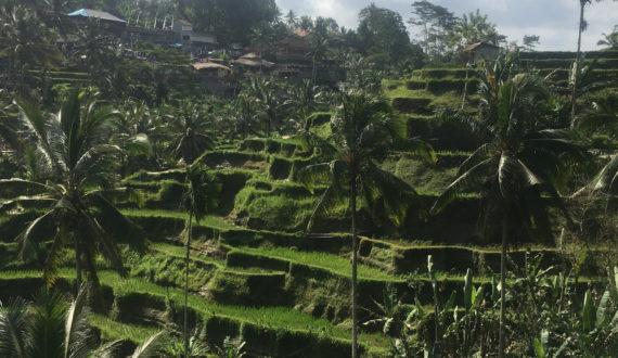Dicas de roteiro para Bali, na Indonésia