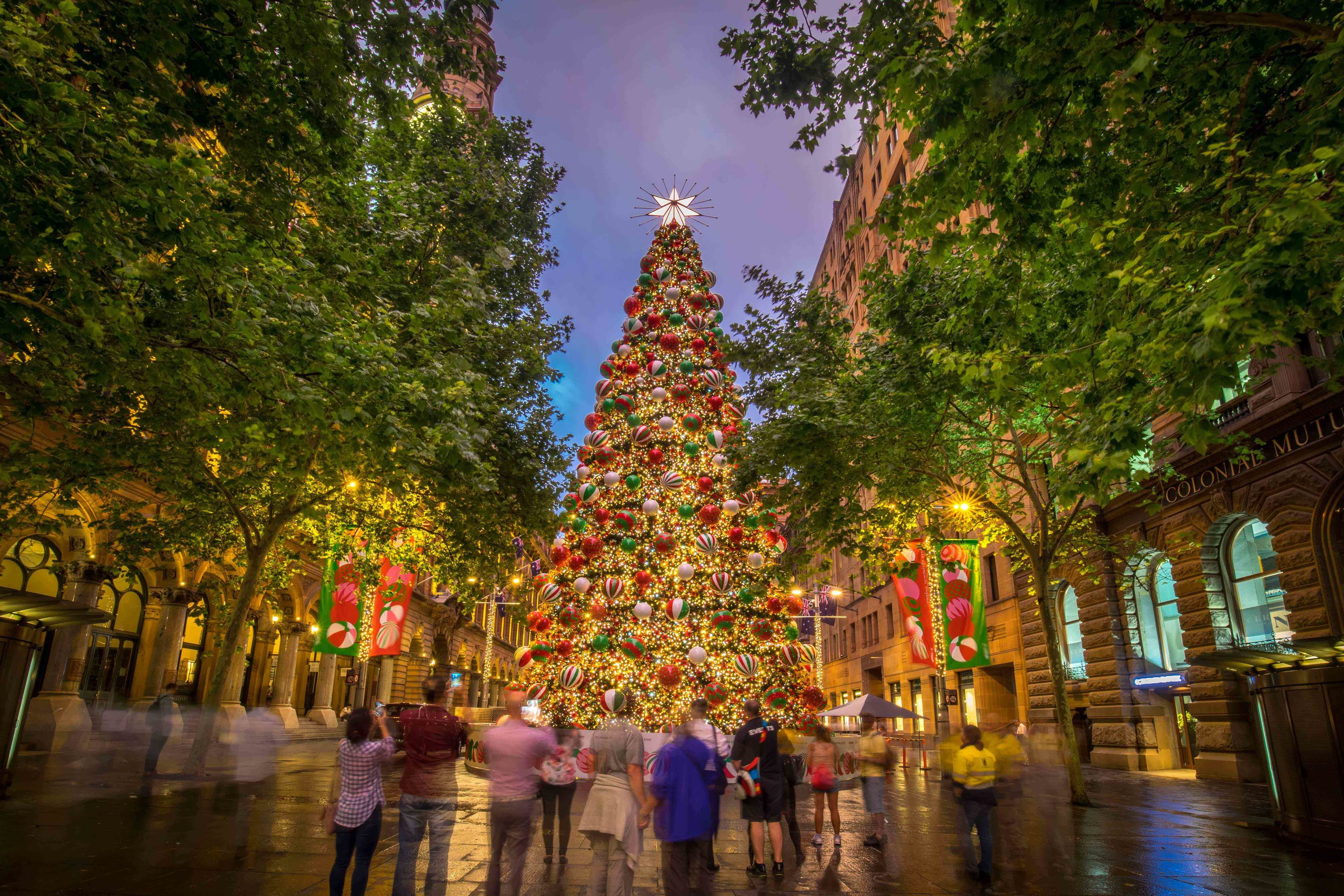 Christmas in the City – Martin Place?>