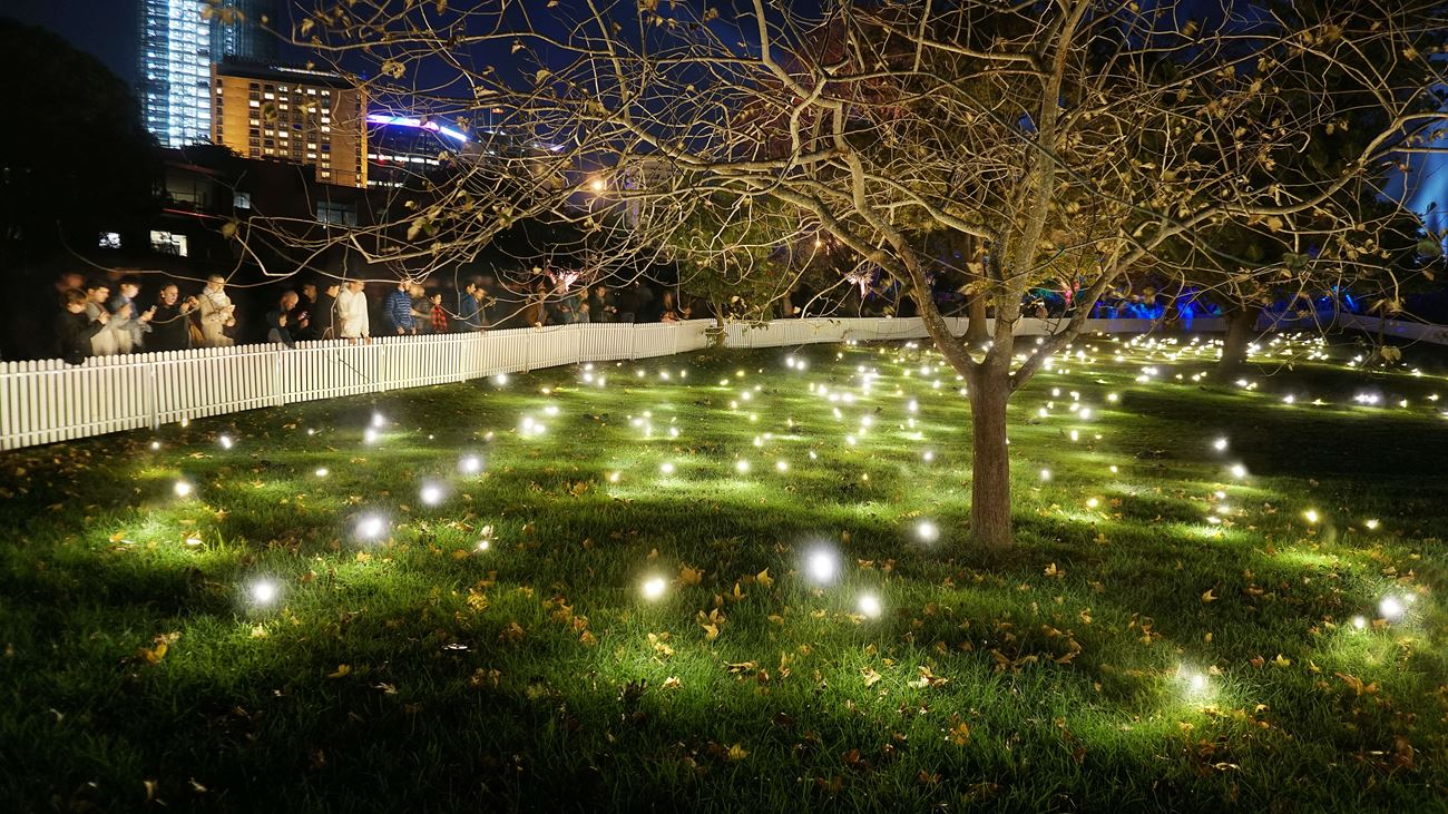 Illuminate Adelaide?>